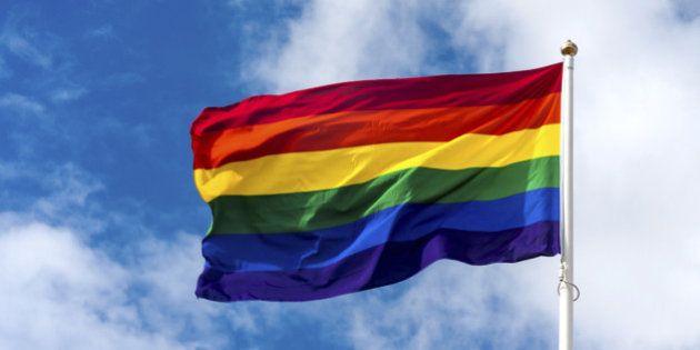 Rainbow flag isolated on