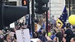 ロンドンでも「ええじゃないか」。EU離脱に反対するプラカードが衝撃的