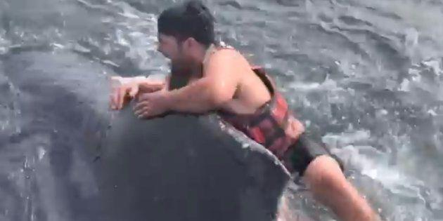 クジラに飛び乗って救出