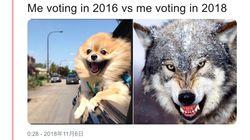 2018年に投票に行く私、2016年とはこんなに違う…米中間選挙ネタの大喜利が盛り上がる