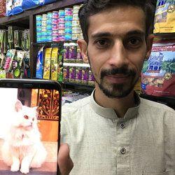 愛猫を自慢するウマルさん。ウマルサンの携帯電話には飼い猫の画像が写っている。(2018年10月)