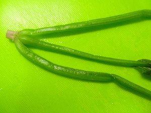 【子供が喜ぶ♪】お弁当の「ほうれん草」は三つ編みでかわいくなる!