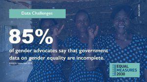 85%のジェンダー平等推進者が政府のデータは不完全であると回答