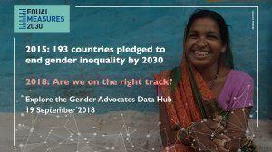 2015年に193カ国が2030年までにジェンダー平等の達成を約束