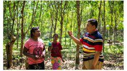 ミャンマーで森林保全と持続可能な天然ゴム生産のプロジェクトが始動