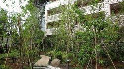 都市にも生態系づくりの視点を/   期待されるABINC認証