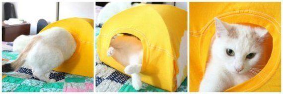 Tシャツでつくる猫用テント 超簡単で猫まっしぐら
