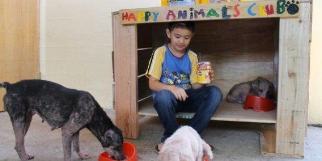 9歳の少年、飼い主のいない動物を助けるために立ち上がる【画像集】