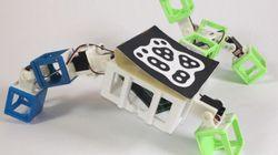 ロボットがデートして子供を産む? 3Dプリントで子孫をつくる