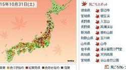 お出かけ日和 本州の紅葉は見頃