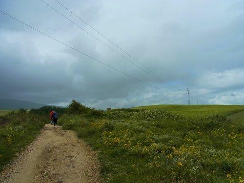【スペイン・サンティアゴ巡礼】夫婦肩を並べて歩くのは...そうそう簡単なことじゃない。