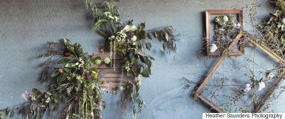 廃墟を冒険するブル・テリア犬、廃屋のソファーで微笑む【画像】