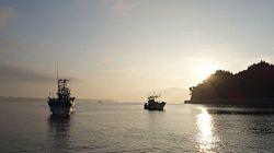 本審査スタート!被災地の海から日本初の「ASC認証」誕生へ