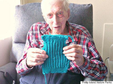 109歳のおじいちゃん、ペンギンたちのためにセーターを編む(画像)