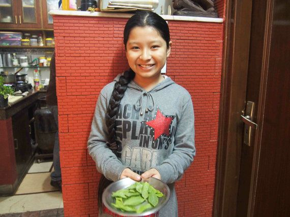 北インドの代表都市、デリーで食べる家庭料理!玄関先で育てるホーリーバジルは、5,000年の歴史がありました。[世界の食卓を実際に訪ねてみた vol.9