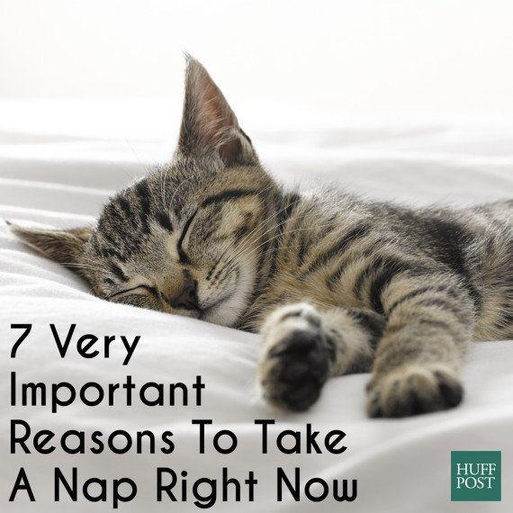 今すぐ短い睡眠をとるべき7つの理由