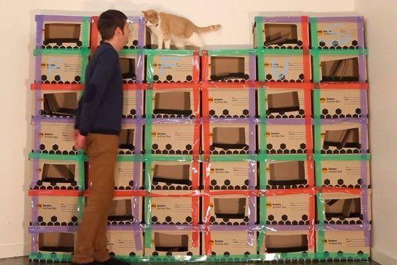 段ボール猫タワーのメイキング、猫の満足度が伝わる動画に
