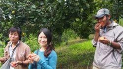 ミャンマーの僻地で起業!