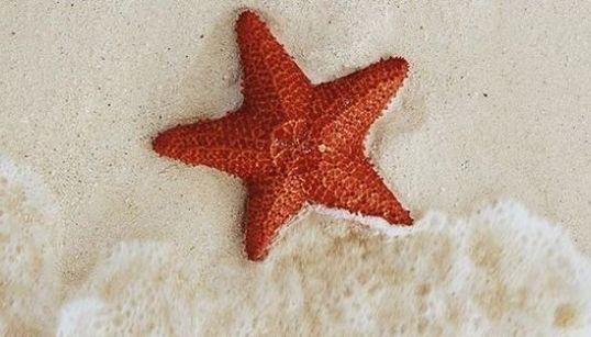 世界の美しいビーチ いつかこの海を泳いでみたい〜レンズの向こう側【画像】