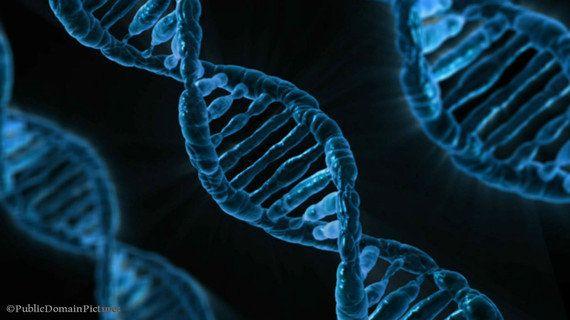 幹細胞とは何か?(4)「クローンES細胞」で拒絶反応を回避!?