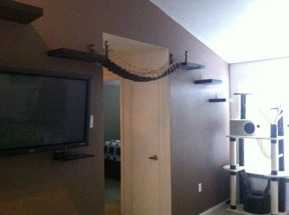 猫をダメにする「インディ・ジョーンズの吊り橋」が絶賛販売中