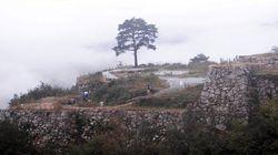 「日本のマチュピチュ」竹田城が雲海に包まれる【画像集】