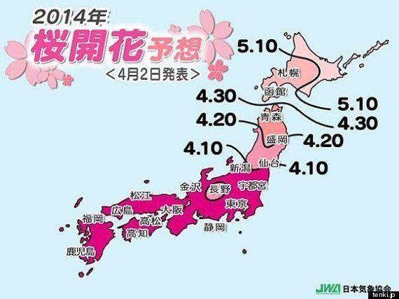 週末の桜の見頃は?(中川 裕美子)