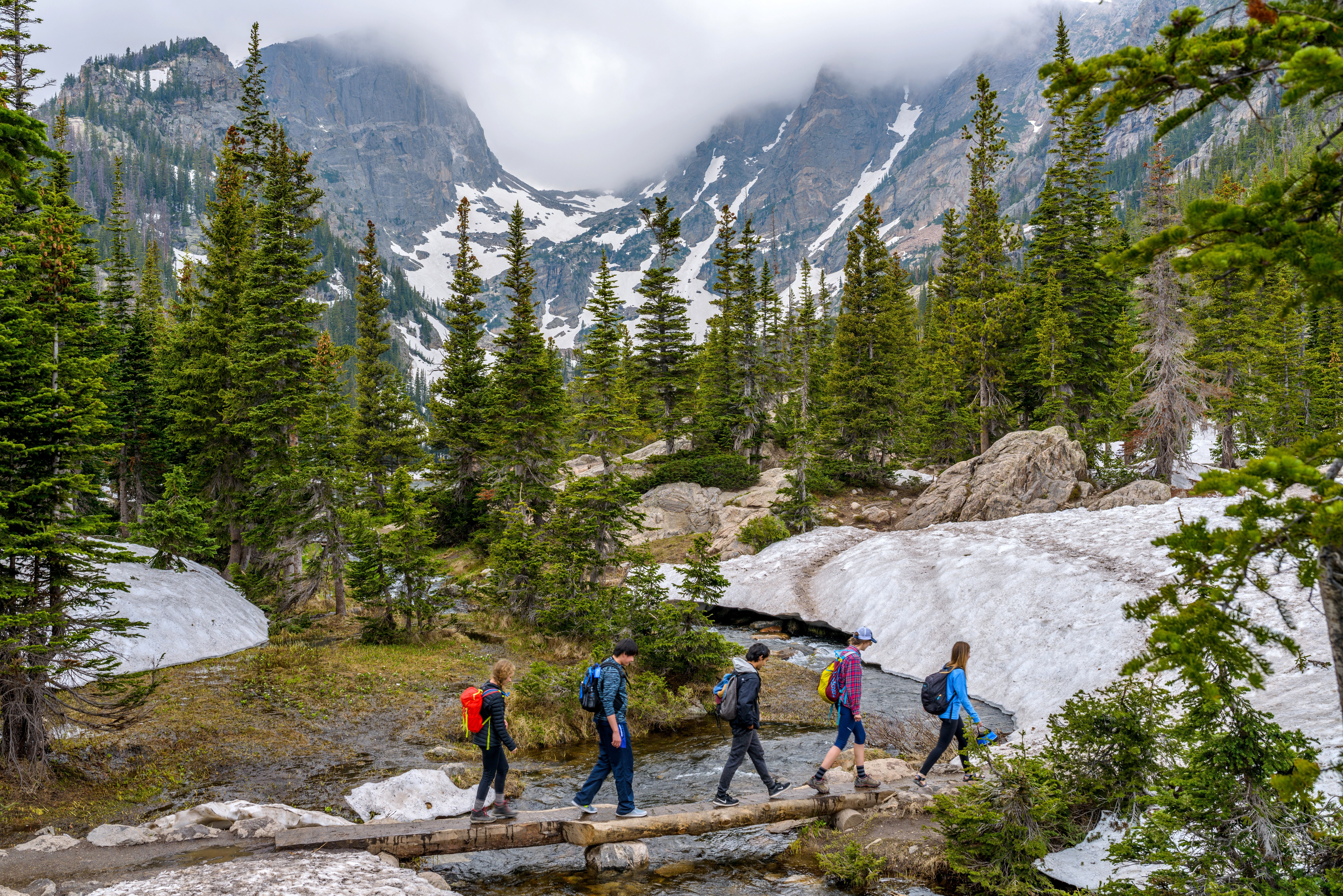 Estes Park, Colorado, USA - June 24, 2017: On a foggy spring day, a group of hikers walking cross a tree trunk bridge over Tyndall Creek on Emerald Lake Trail at base of Hallett Peak and Flattop Mountain in Rocky Mountain National Park.