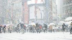 大粒の雪で路面はシャーベット状態に 6日の朝は足元に注意