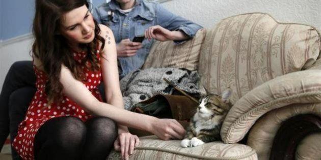 「猫カフェ」ロンドンでもオープン、6月まで予約満杯の人気ぶり