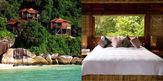 世界の贅沢なツリーハウス10選