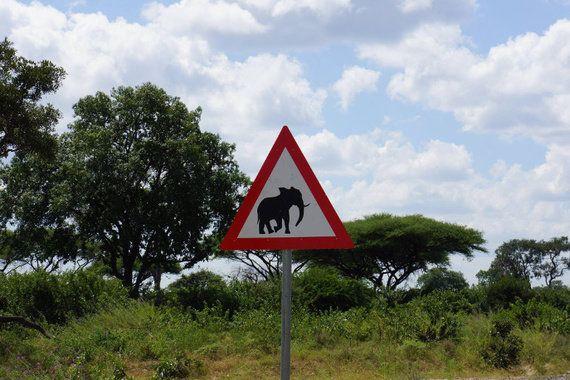 育自分休暇日記──4年目社員、アフリカへ。会社を辞めて気付く「常識」のちがい
