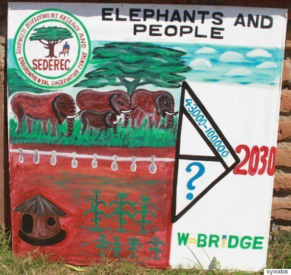 象牙密猟は生息地でどう受けとめられているか?――二重に苦しめられるタンザニアの地域住民