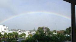 「同性婚に反対する人へ。約束しましょう」ニュージーランドの議員の演説に耳を傾けてみよう