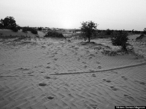 エジプト/スーダン:人身売買業者による拷問