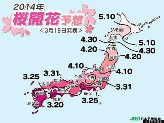 桜開花予想、来週末には東京でも(藤野勝成)