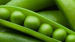 「美味しいお豆の作り方」