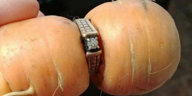 13年前に紛失した結婚指輪、なんとニンジンにはまった姿で見つかる