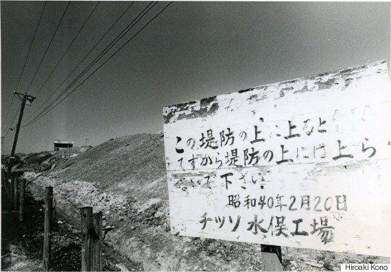 水俣病、公式確認から60年 なぜ福島でも、同じことが繰り返されるのか(インタビュー)