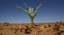 南アフリカは、なぜ深刻な水不足に悩まされ続けているのか?