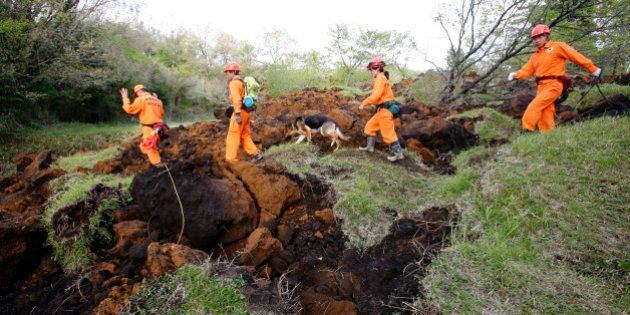 Rescuers and a search dog check the damage around a landslide area caused by earthquakes in Minamiaso,...