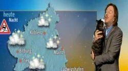 天気予報放送中に猫が乱入、視聴者の視線を釘付けにする