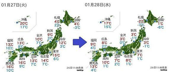 梅が開花、東京都心で 27日は一転して冷たい北風(中川裕美子)
