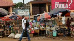 エボラ出血熱による経済的打撃、ギニア・リベリア・シエラレオネは依然「壊滅的」