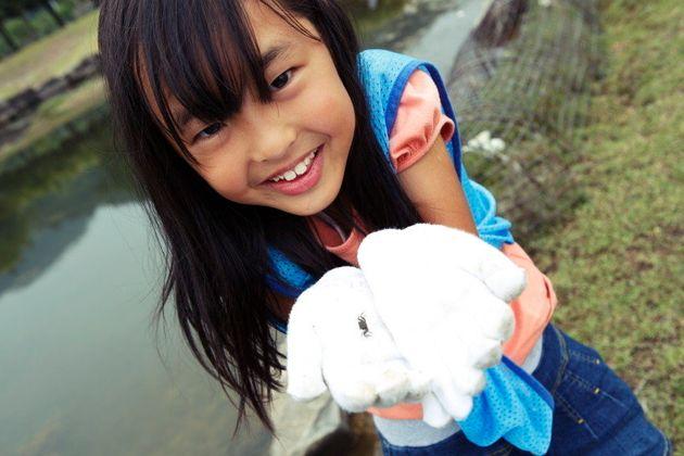 カキ養殖の光と影――海岸に拡がるプラスチックの「雪」。広島の市民はどう動いているのか