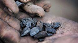 バイオ炭は地球と人類を救えるか