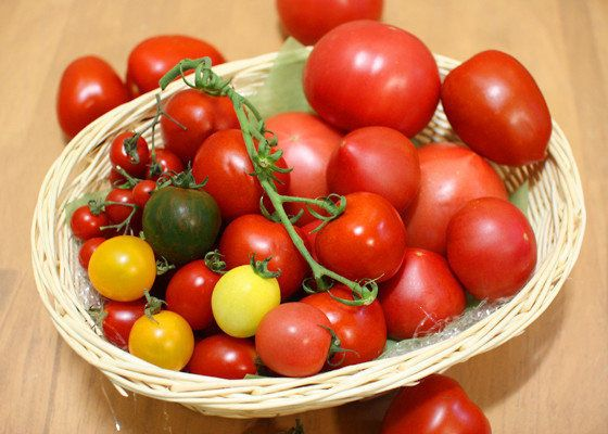 今、店頭で種類がいっぱい!悩むあなたに「トマト」の選び方指南