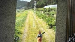 「では、ねぎまになってきます。」焼き鳥屋のポスターに涙を禁じ得ない