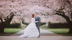 桜の下で幸せを誓おう。春の結婚式はとっても素敵ね