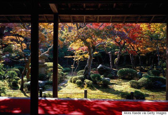 紅葉さんぽに出かけよう。憧れの山々から神社仏閣まで